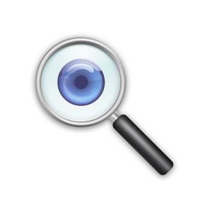 Inspección visual